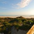 Beachers-view