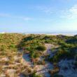 BeachersLodge1