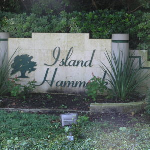 Island Hammock homes for sale